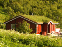 Lofoten's lodge with grass on the roof. Lodge with grass on the roof on Roervik beach, Lofoten islands royalty free stock photo