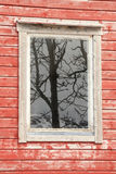 Lofoten's window reflecting a tree Royalty Free Stock Photo