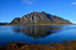 Lofoten summer Royalty Free Stock Images