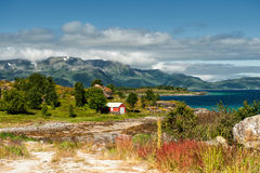 Lofoten at summertime Royalty Free Stock Image