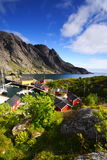 Lofoten village royalty free stock photo