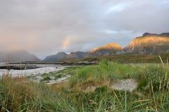 Lofoten Wyspy, Norwegia Obrazy Royalty Free