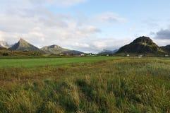 Lofoten Wyspy, Norwegia Zdjęcia Royalty Free