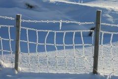 Lofotens gefrorener Draht Stockfotografie