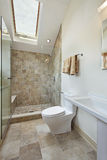 Loft bathroom with skylight royalty free stock image
