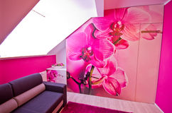 Loft conversion with orchid theme decoration Stock Image