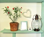 Beautiful rose plant in pot, photo picture frame, old lamp on wooden shelf. royalty free stock image