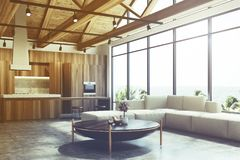 Loft living room and kitchen toned Royalty Free Stock Photography