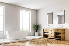 Loft o canto, a cuba e o dissipador luxuosos brancos do banheiro ilustração royalty free