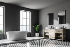 Loft o canto, a cuba e o dissipador luxuosos cinzentos do banheiro ilustração do vetor
