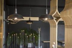 Loft stylowej wiszącej drucik lampowej żarówki dekoraci rocznika starego mod Obraz Royalty Free
