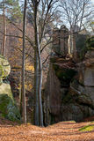 Lofty stones in forest Royalty Free Stock Photo