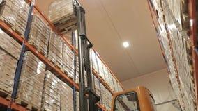 Logística de Warehouse Amontonamiento de la plataforma almacen de video