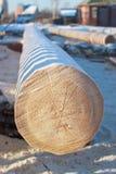 Log à un chantier de construction en hiver photos libres de droits