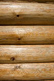 Log background Stock Image