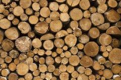 Log background Royalty Free Stock Image
