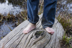 On the log barefooted. Royalty Free Stock Photography