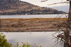 Log boom on lake Royalty Free Stock Images