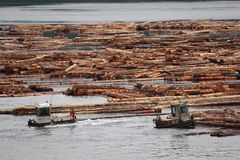 Log Booms, Vancouver Island, British Columbia Stock Images
