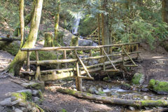 Log Bridge Royalty Free Stock Photo