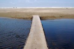 Log Bridge. Over water toward Pacific ocean royalty free stock image