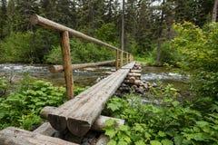 Log Bridge Crosses Rushing Creek Royalty Free Stock Images