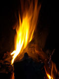 Log burning on fire at night. Closeup of wooden log burning on fire at night Royalty Free Stock Images