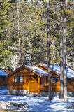 Log Cabin. A small cabin constructed of logs in a forested setting Stock Photography