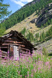 Log cabin in Alpine valley Stock Photography