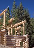 Log cabin being built Stock Images