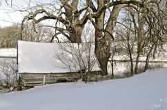 Log cabin covered with snow Royalty Free Stock Photos