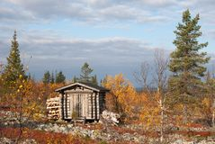 Log Cabin in Deep Taiga Forest Royalty Free Stock Photography