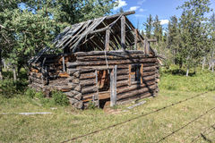 Log cabin. Dilapidated log cabin falling down Royalty Free Stock Images