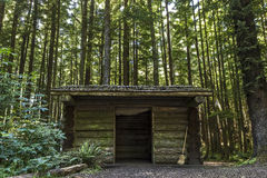 Log Cabin in the Evergreens. A simple log cabin with four small bunks at a hike in camp on the Oregon coast Stock Photos