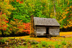 Log cabin in fall colors Stock Image