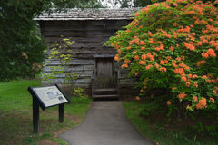 Log Cabin with Flaming Azalea- Blue Ridge Parkway, Virginia, USA Royalty Free Stock Photos