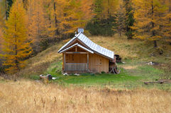 Log cabin in forest Royalty Free Stock Photography