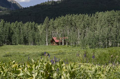 Log cabin home in Rocky Mountain forest Stock Photography