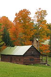 Log cabin and maple trees in the fall. An old log cabin with a green roof sitting on a slope with orange maple trees in front Royalty Free Stock Photography