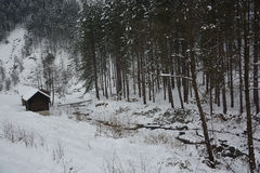 Log cabin in the middle of nowhere Royalty Free Stock Photo