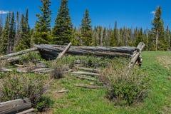 Free Log Cabin Poles Stock Image - 95811391