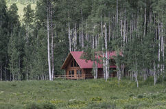Log Cabin Rental in the Woods. Log cabin in the woods in a serene atmosphere surrounded by tall trees stock photos