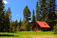 Log Cabin Shack with a Red Roof in the Pine Tree Woods Royalty Free Stock Image