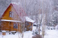 Log cabin in snowy forest. Scenic view of log cabin in snowy Winter forest, Russian federation Royalty Free Stock Image