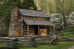 Log Cabin. Surrounded by dogwoods in bloom Stock Photography