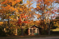 Log cabin in the trees. Small log cabin in the autumn trees with two green chairs out in front Royalty Free Stock Photography