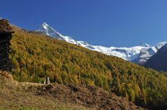 Log cabin and view of glaciers Royalty Free Stock Photos