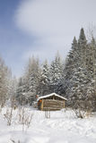 Log cabin in winter forest Stock Image