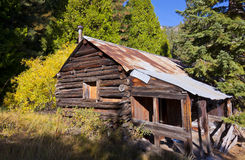 Log Cabin Woods Stock Images