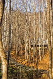Log Cabin in the Woods Stock Photos
